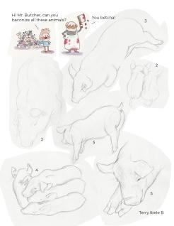 Royal Winter Fair Sheridan Drawings 3