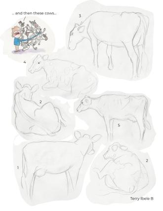 Royal Winter Fair Sheridan Drawings 5