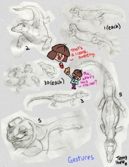 Sheridan Animation Zoo Sketches